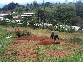 Making the garden 3