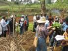Handing out seedlings